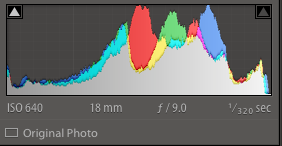Properly exposed histogram